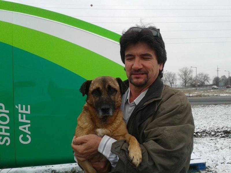 toro-gabor-az-egyik-befogadott-kutyaval-